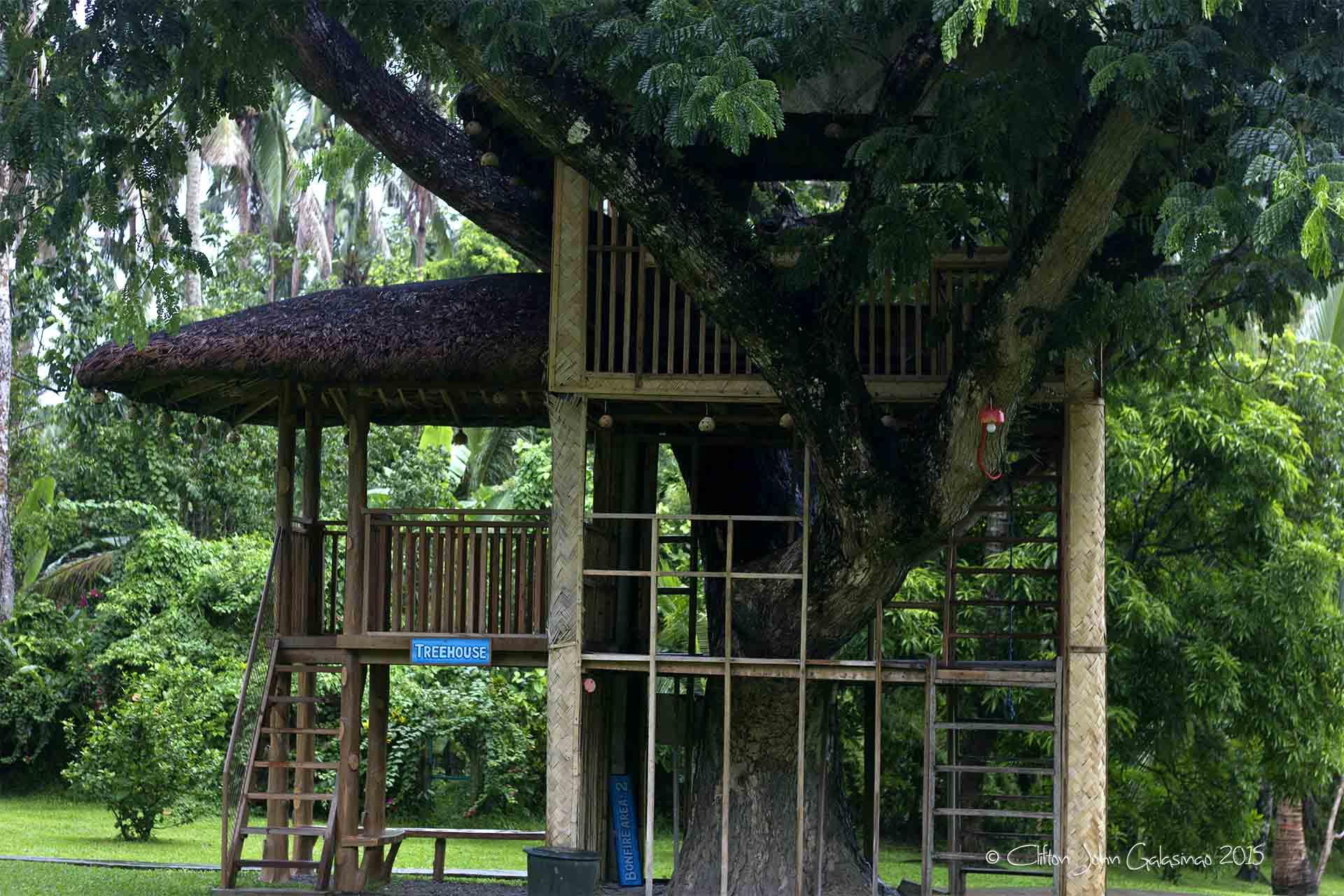 Upscale Tree House Rizal Center Tree House Pxels Tree Center Coupon Tree Center Location houzz-03 The Tree Center