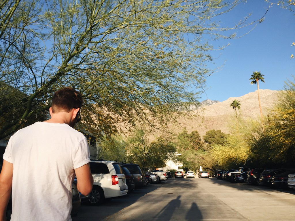 palm springs, spring, flowers, photography, creativestay