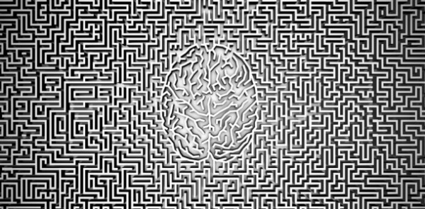 Brain grid
