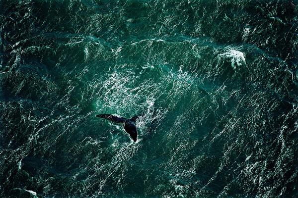 aerial-photography-yann-arthus-bertrand-12