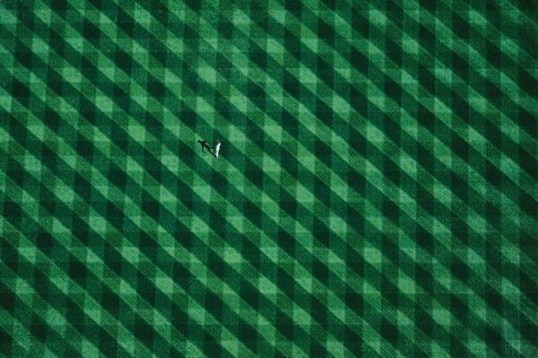 aerial-photography-yann-arthus-bertrand-14