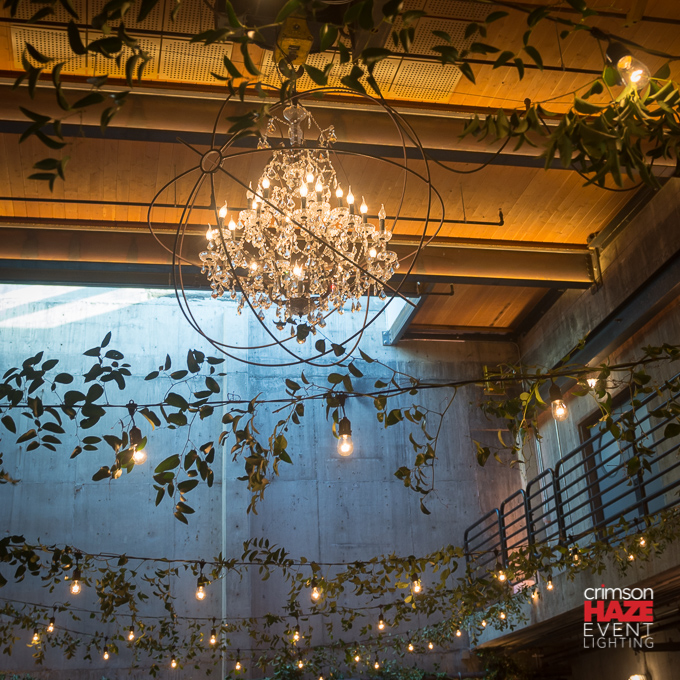 Garland Style String Lights : String Lights (Decorative Cafe-Style Bistro Lights) in Seattle