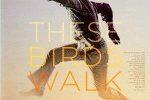 These Birds Walk Thumbnail