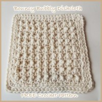 Bouncy Bubbly Dishcloth