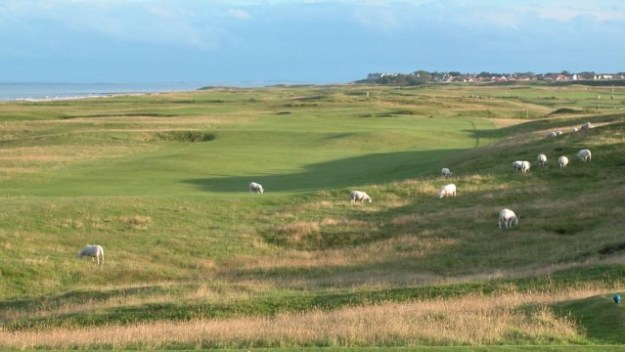 Crofting Convener, Colin Kennedy, walks out of Board meeting at Brora Golf Club and remaining Commissioners seek his resignation