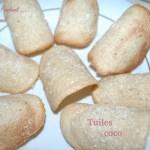 Tuiles coco - DSC_2802_10960