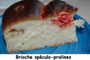 brioche-speculo-pralines-index-dsc_3488_979