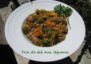 Trio de blé aux légumes IMG_5627_33796