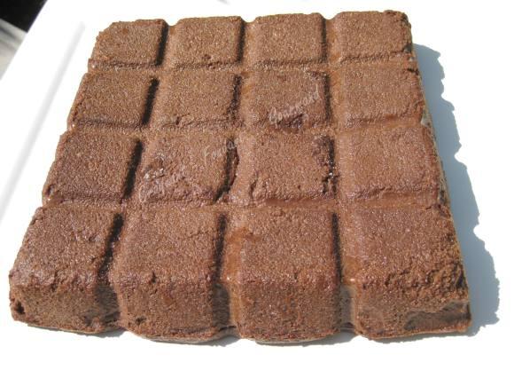 Gâteau flan chocolat IMG_5988_34949