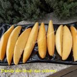 Dents de loup au citron  DSCN6088