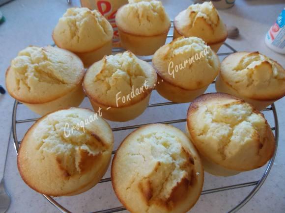 Gâteau citron-coco DSCN0508