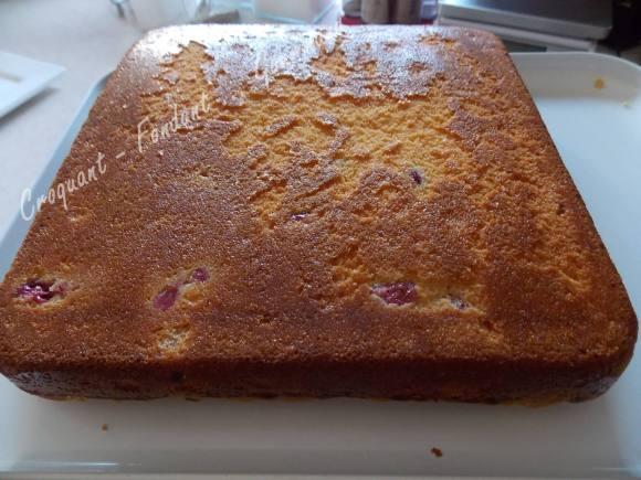 Crumb cake rhubarbe-griottes DSCN5950