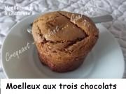 Moelleux aux 3 chocolats Index DSCN5036_25026