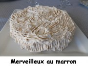 merveilleux-au-marron-index-dscn8234