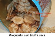 croquants-aux-fruits-secs-index-17-12-2008-022-copie