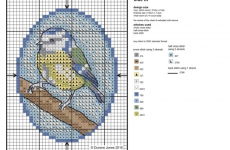 Blue Tit Pattern – It's  A Bird!