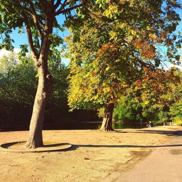 We  Autumn Days  crosstheuk training advice adventure autumnhellip