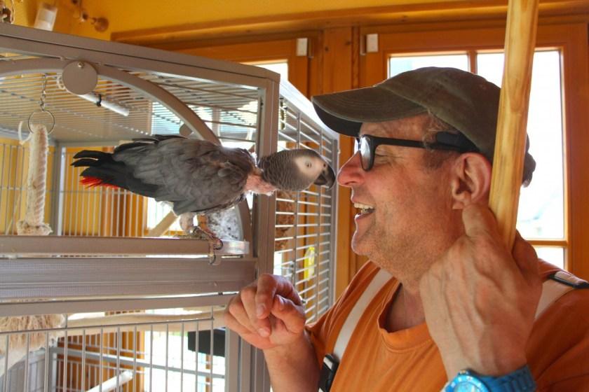 Gerd spielt mit Papagei Barney.