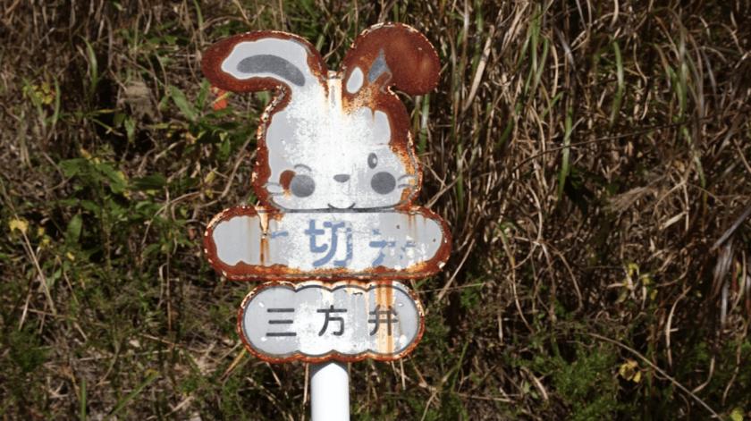 Fukushima_2