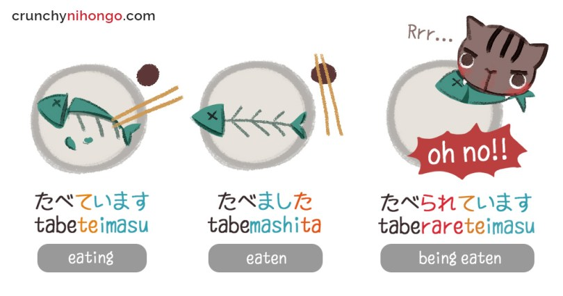 japanese-verb-forms
