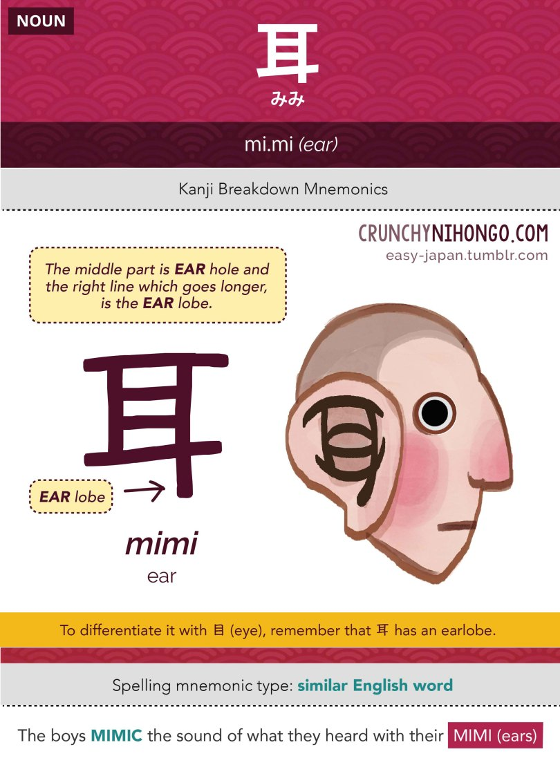 n5-vocabulary-mimi-ear