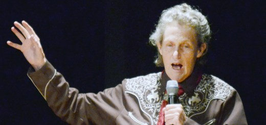 Temple Grandin, animal behavior expert, speaks to CSC students and community members Thursday, Jan. 28 in the auditorium of Memorial Hall.  —Photo by Sara Tweet