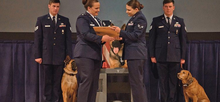 At ease, loyal defenders: Peterson AFB honors Military Working Dogs