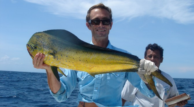 Cuban Fishing, 3-7-15, Dorado Or Mahi-mahi By Michael Stockton Via Creative Commons.