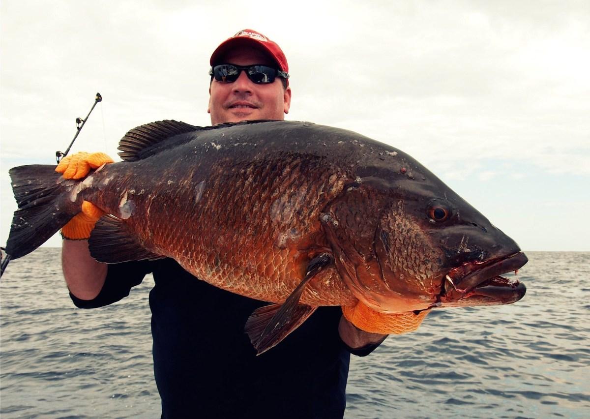 Cubera snapper cuban fishing for Fishing in cuba