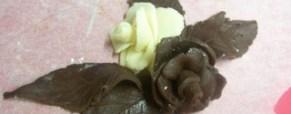 Cioccolato plastico. Foto Primo esperimento.Cerco consigli!!