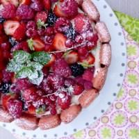 Charlotte aux fruits rouges pour Basile