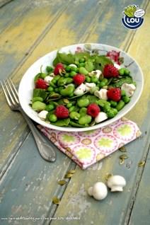 SALADES DE CHAMPIGNONS LEGUMES VERTS ET FRAMBOISES - Cuisine de tous les jours pour Lou Légumes