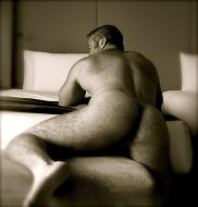 daddy bear's hairy arse