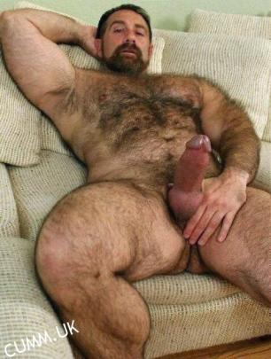 Man Bear chubby gallery