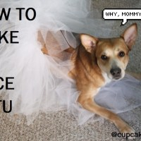 how to: easy cheap grown woman's tutu