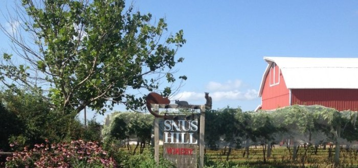 Snuz Hill Winery