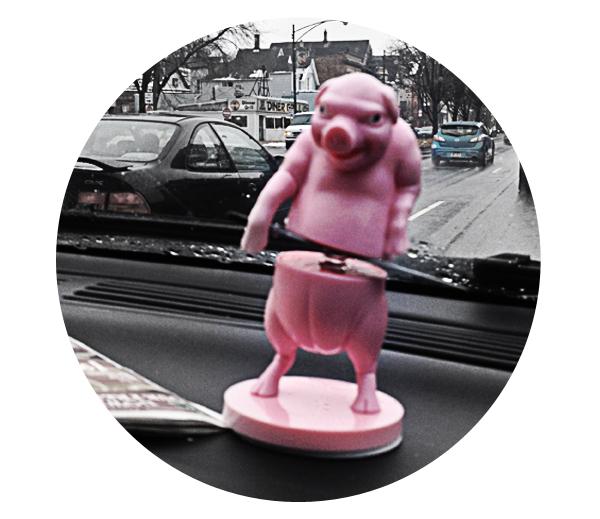 My spirit animal is a dashboard pig