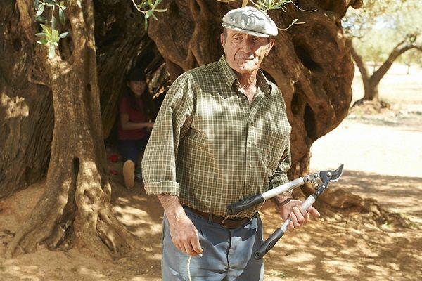 Manuel Cucala, Actor No Profesional, Brillante en el Olivo