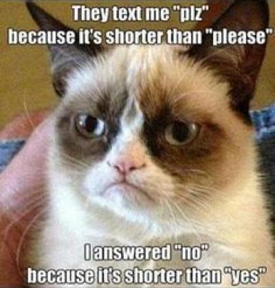 cat-humor4