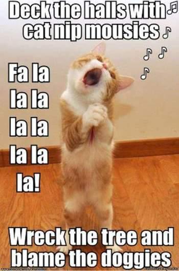 fs-12-2-2016-christmas-kitty-singing