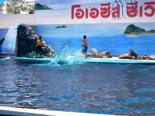 Oasis Seaworld in Pattaya