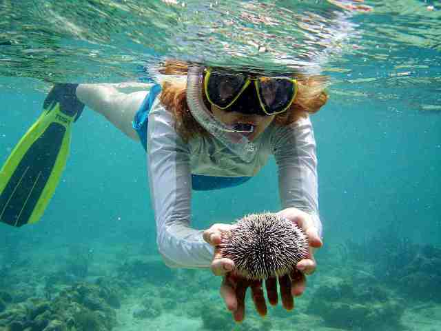 snorkeling, water activity, krabi, thailand