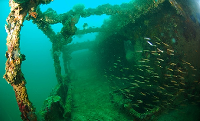 ship wreck, subic, philippines