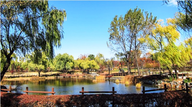 seoul park, korea, yongsan