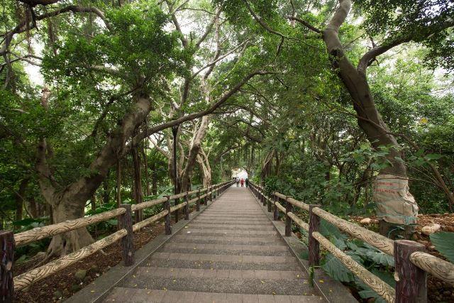 hiking, taiwan, taoyuan