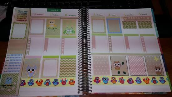 Owl Stickers used in Planner