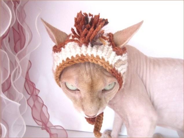 cat-hat8
