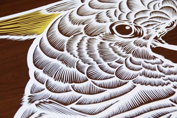Cutteristic - Bird King Parrot 01