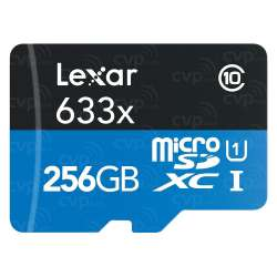 Small Crop Of 256 Sd Card
