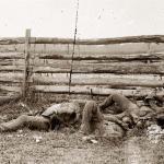 Spotsylvania Dead